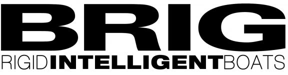 brig-logo-black-intelligent